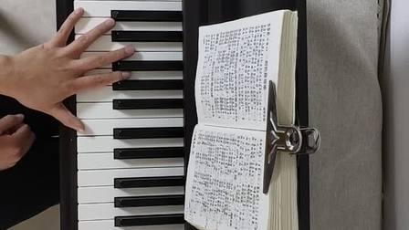 弹琴视频(十五)