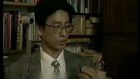 白岩松采访季羡林