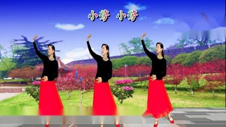 荆州雨荷广场舞《小芳小芳》编舞:応子