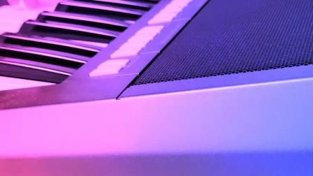 爱的世界只有你 电子琴