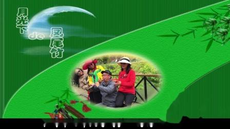 月光下的凤尾竹  临海老年大学高高兴兴班在潘家小镇的演奏