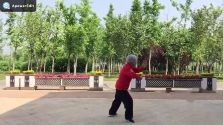 28式传统太极拳.