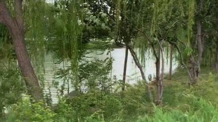 水上公园掠影