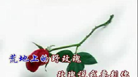 舒伯特的《野玫瑰》_标清