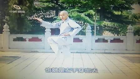 少林大洪拳