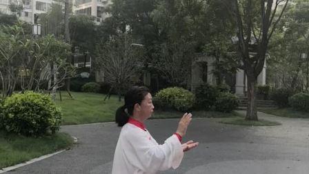 贞珍晨练24式太极拳