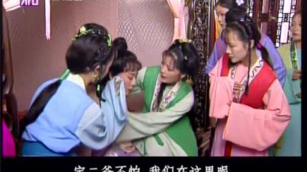 越剧 红楼梦 钱惠丽 余彬 04-07