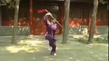 陈氏太极剑49式-徐勤兰背向演练
