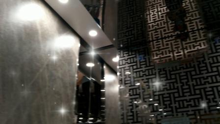 辛格林别墅电梯,乘客电梯,家用电梯到底质量和设计怎么样呢?跟我来看看就知道了