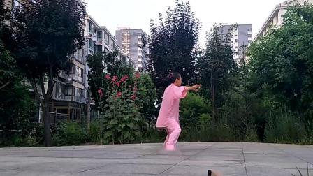 白云陈式24太极拳