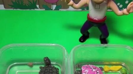 乔治有小乌龟,小猪佩奇却没有,佩奇说猪爸爸偏心