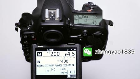 尼康D850单反摄影教程04:点测光到底该怎么用?