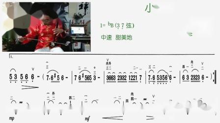 小背篓(降B 37弦)