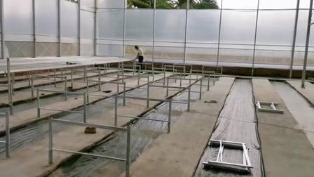 甘肃移动苗床安装 温室苗床设施专业生产 航迪