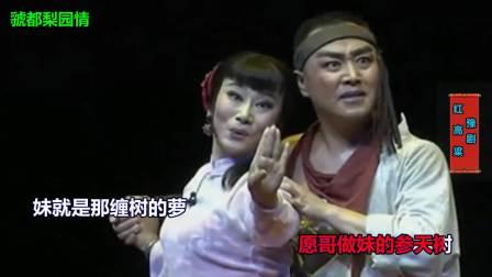 豫剧《红高粱》选段