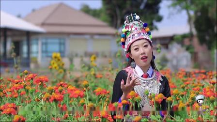 苗族歌曲-645--Hmoob Sib Hlub By Ntxawm Xiong