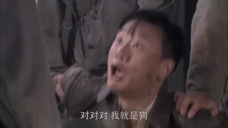 苏先俊被枪决2