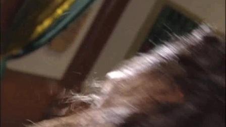 我在倚天屠龙记 07截了一段小视频