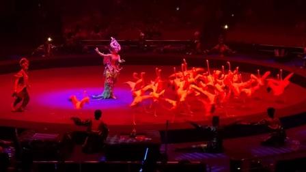 珠海大马戏20200817
