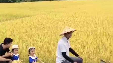 。波罗垌村民自造基耕铁路通车。
