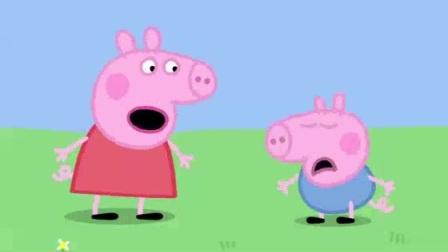 我在中间的小猪截了一段小视频