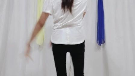 阿文樂樂广场舞、竖屏《无价之姐》李宇春演唱