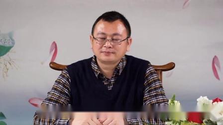秦东魁(上等风水学理论)第11集-建立上等能量场 高清(480p)