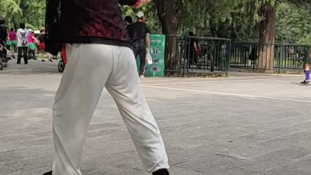 郑老师习练28式太极拳