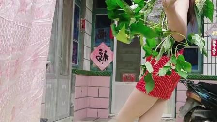阿文樂樂广场舞、竖屏《乌苏里船歌》降央卓玛演唱