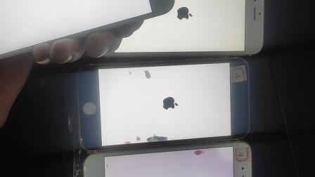 手机白苹果无法开机