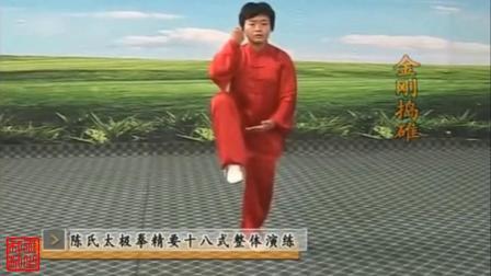 陈氏太极拳精要十八式《疏梅弄影》