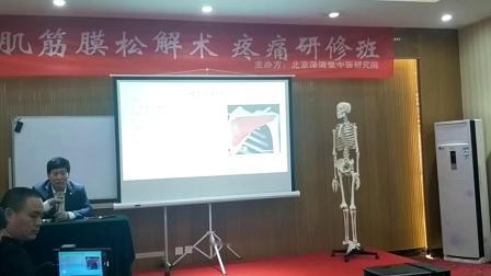 中医推拿针灸培训视频-叶颖华肌筋膜松解术-冈下肌