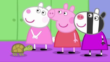 小猪佩奇:同学很喜欢仓鼠兽医,上课很有趣,还有小动物可以摸!