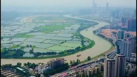 航拍深圳京基100(1080p版本)2020.10.19