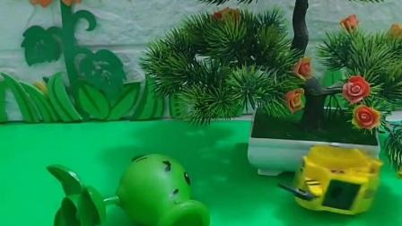 小朋友的豌豆射手洗不干不净了,他不想要了,好尴尬