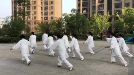 竞赛套路28式太极拳