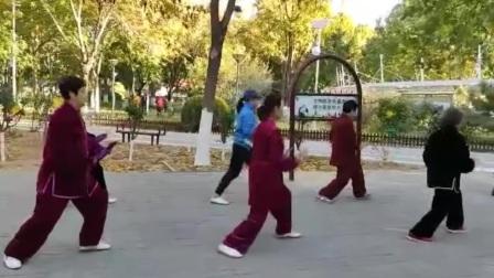 晨练24式太极拳