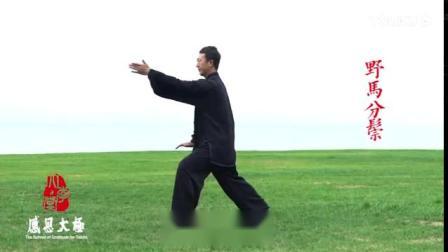 常东峰演练传统杨氏85式太极拳_标清(8100332)