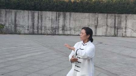 杨式40式太极拳戴华茜