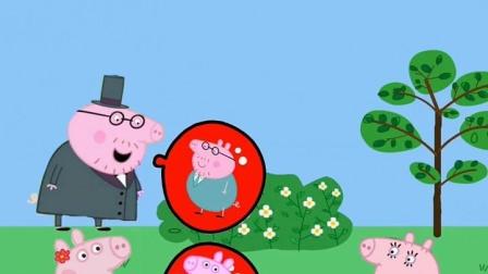 猪妈妈可羡慕了,气球上面还有大家的照片