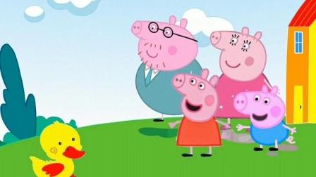 小鸭子们以为猪妈妈是他们的妈妈,说了不是都不信