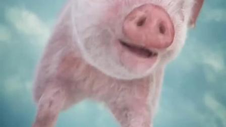 波妞这次害惨猪猪了!