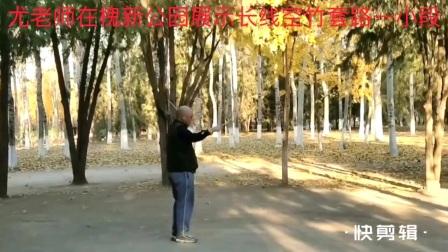 尤老师在槐新公园展示空竹长线套路一小段