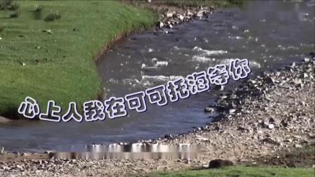 笛子曲【可可托海的牧羊人】bE2调