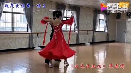 杨艺慢三规范交谊舞 (又见北风吹)分解动作教学
