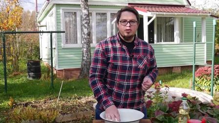 大厨教你做香酥牛肉饼:再也找不到比这个更详细的教程了,珍藏