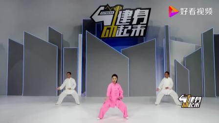 邱慧芳—42式太极拳18.野马分鬃