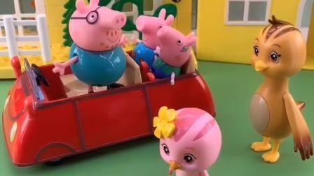 猪爸爸带佩奇乔治去游乐场,朵朵也想去,鸡妈妈会同意吗?