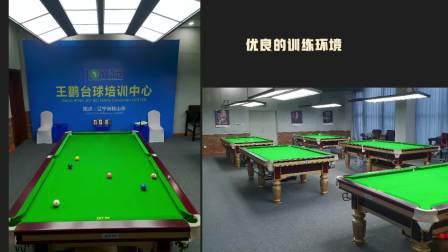 [乔氏台球]赵汝亮VS何文冲 2020中式台球大师赛