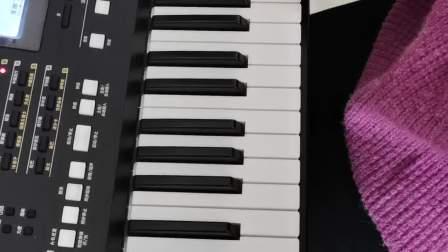 《野兔和猎狗》电子琴大教本下册
